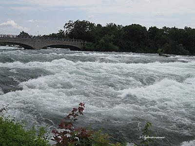 Niagara Falls Rapids photo by Sylvestermouse