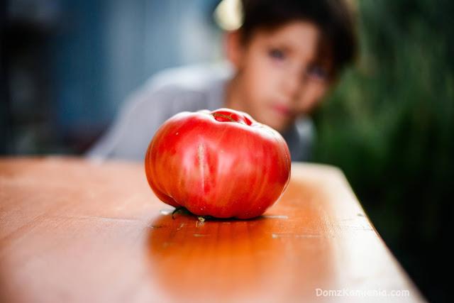 toskańskie pomidory
