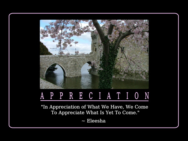 65 Best Admiration Quotes Sayings: Image Quetes 13: Appreciation Quotes
