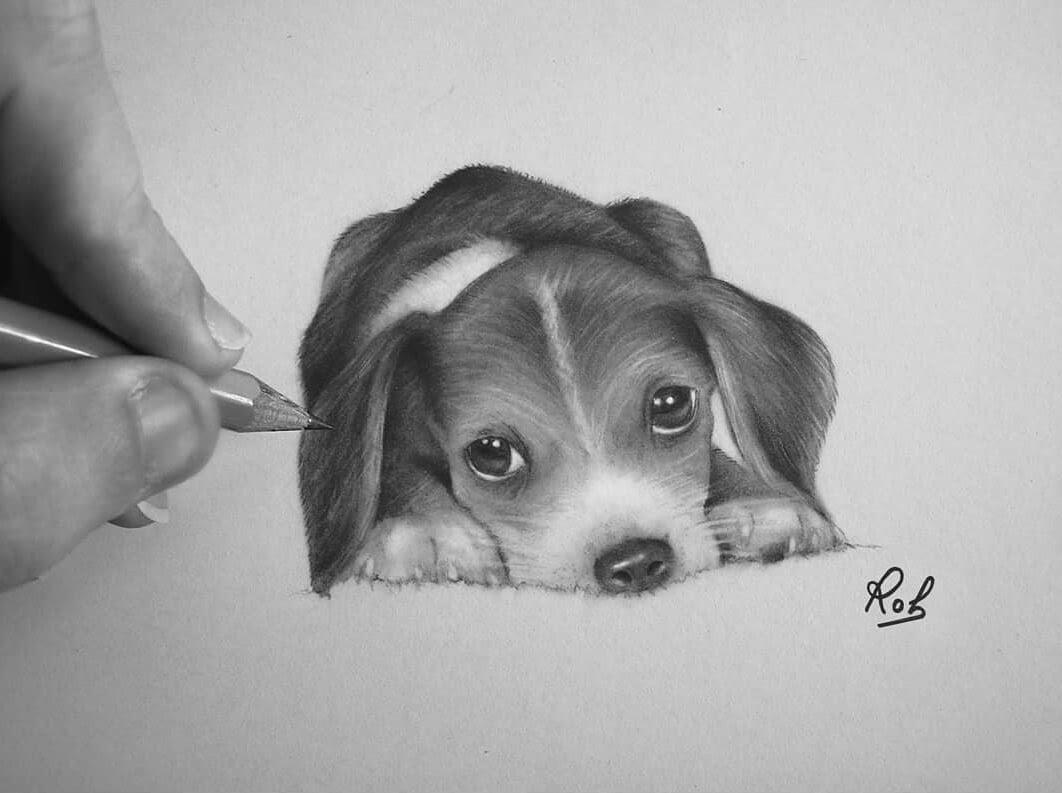 04-Little-Beagle-Puppy-Roberto-Matteazzi-Animal-Drawings-in-Black-and-White-Charcoal-Portraits-www-designstack-co