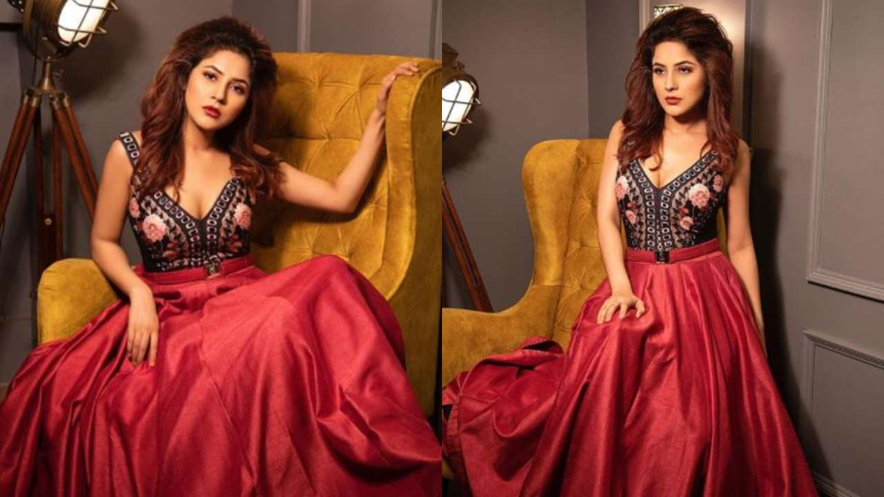 In Pic of the day: Shehnaaz Gill oozes glamour in the latest photoshoot as she sends internet into meltdown
