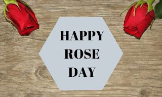 Happy Rose Images
