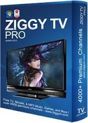 تحميل برنامج مشاهدة قنوات التلفزيون على الكمبيوتر Download ziggy tv 2017