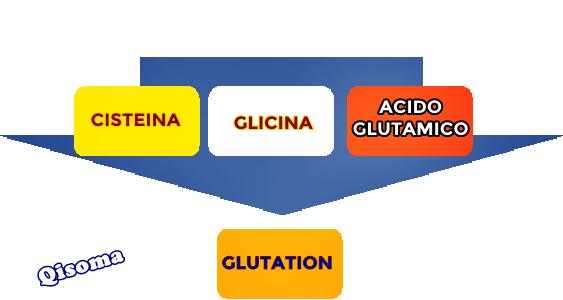 glutation2