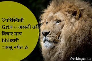 marathi  status,bhaigiri marathi  status