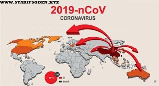 Update Corona Di Indonesia: 227 Dinyatakan Positif Terjangkit