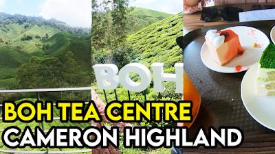 Boh Tea Centre Cameron Highland