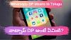 Whatsapp Dp Means In Telugu