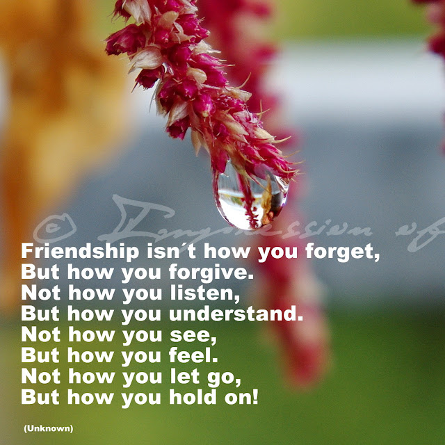 Friendship isn´t how you forget, but how you forgive. Not how you listen, but how you understand. Not how you see, but how you feel. Not how you let go, but how you hold on! - Unknown