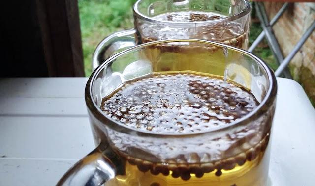 Bukan Sulap Bukan Sihir, Minum Rendaman Air Biji Ketumbar Disebut Bisa Tangkal Diabetes Hingga Kanker Mematikan