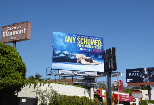 Amy Schumer Leather Special billboard