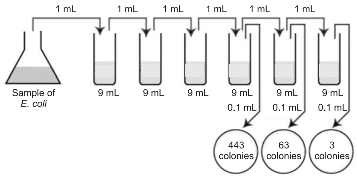 CFU per ml of a Bacterial sample solved problems