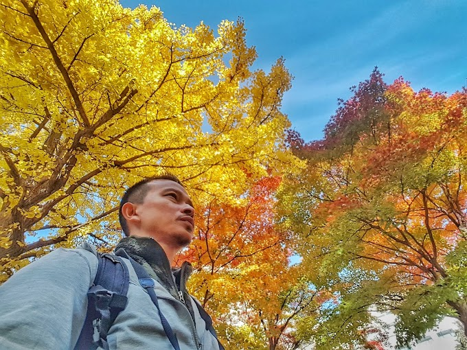 Trip Fotografi Musim Luruh Hokkaido 2019