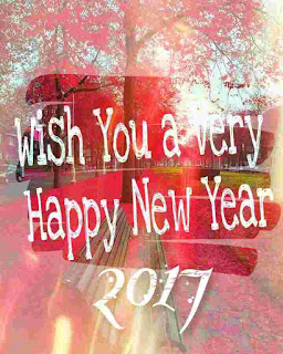 New Year 2017 Whatsapp DP
