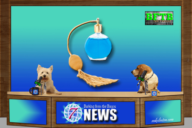 BFTB NETWoof News story on perfume that smells like Kitten Fur