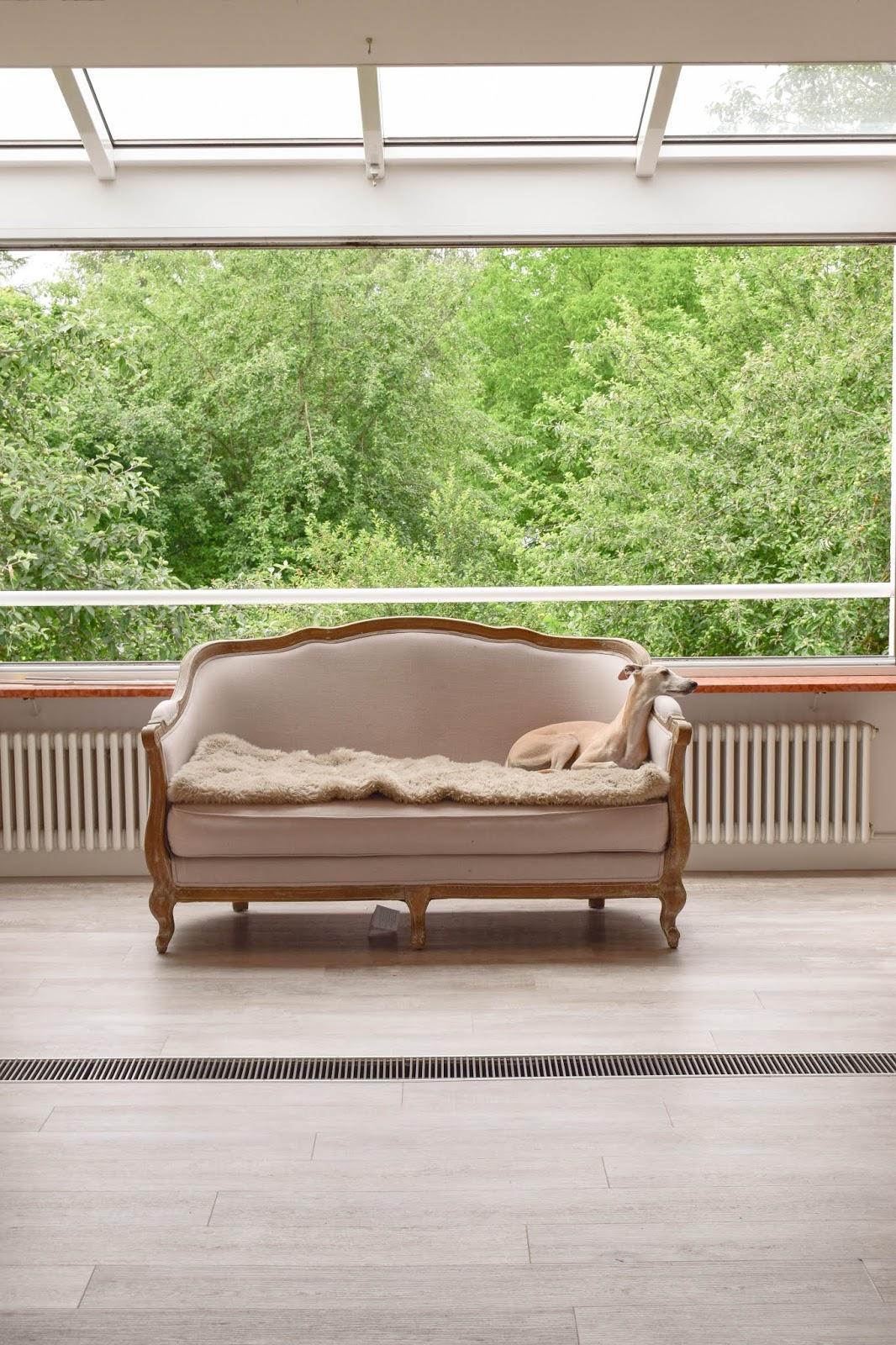 Renovierung Update Esszimmer Sofa Lucy Whippet