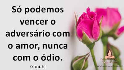 Só podemos vencer o adversário com o amor, nunca com o ódio. Gandhi