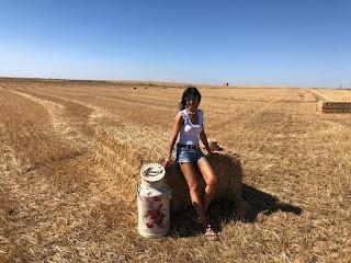 tierra de campos zamoranos