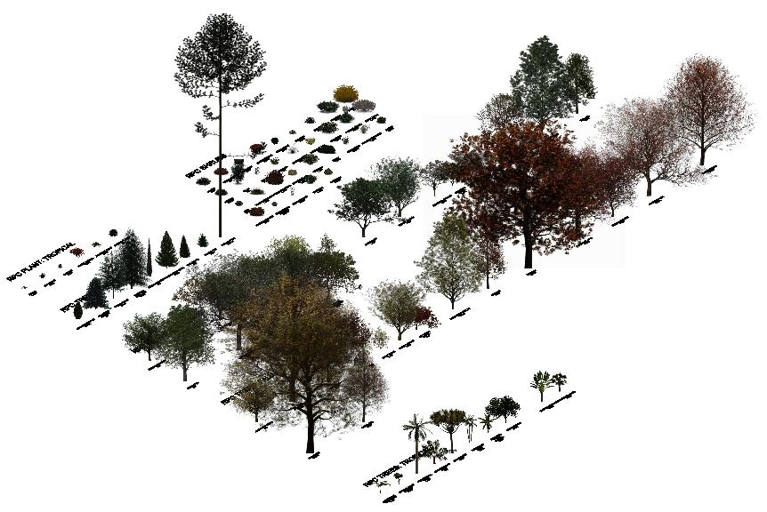 Revit tree family download
