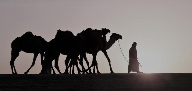 حياة رسول الإسلام