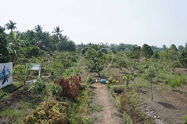 Agrowisata Edupark RJ3 jalan rasau jaya tiga kabupaten Kubu Raya