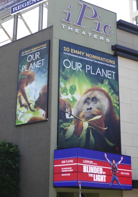 Our Planet Emmy nominee orangutan billboards