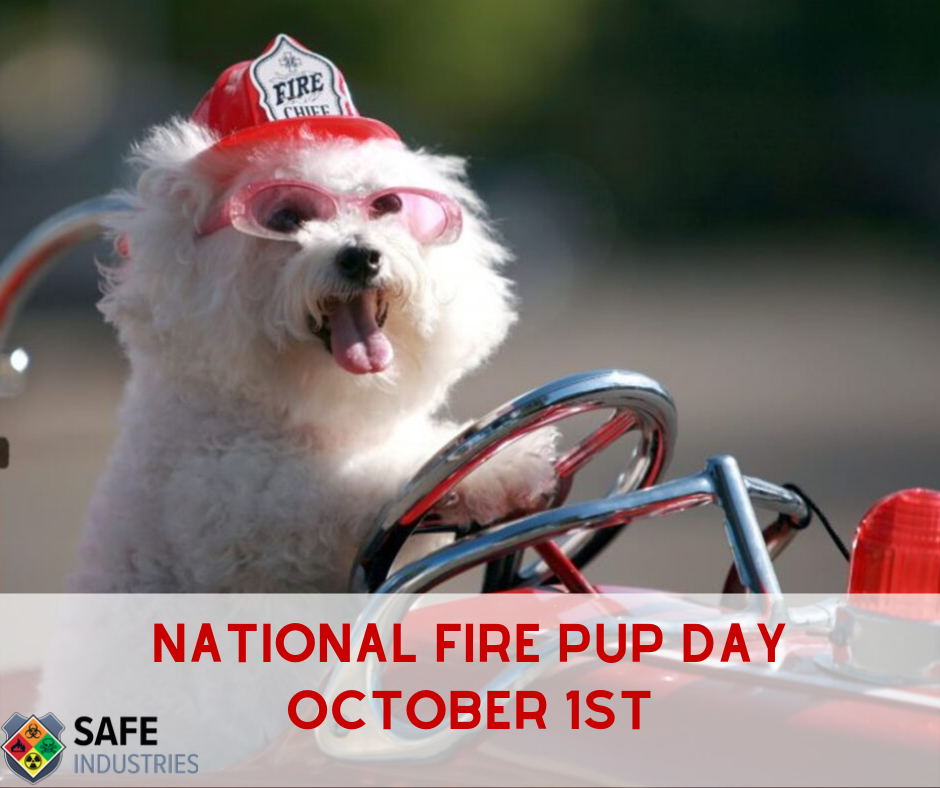 National Fire Pup Day Wishes