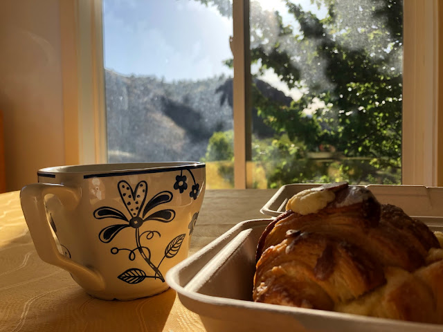 pastry and coffee mug on table in front of window