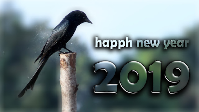 happy new year 2019 3d images