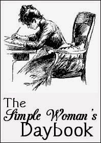 Simple Womans Day Book