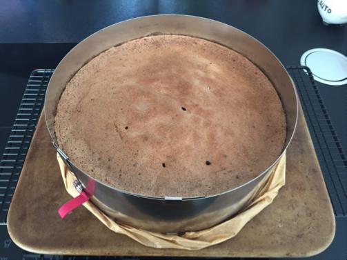 Thermosternchen Yogurette Torte Von Nadine Hofmann Mit Thermomix