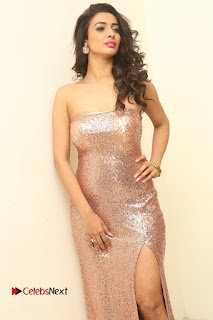 Actress Heena Panchal Pictures in Long Dress at Thikka Audio Launch  0041