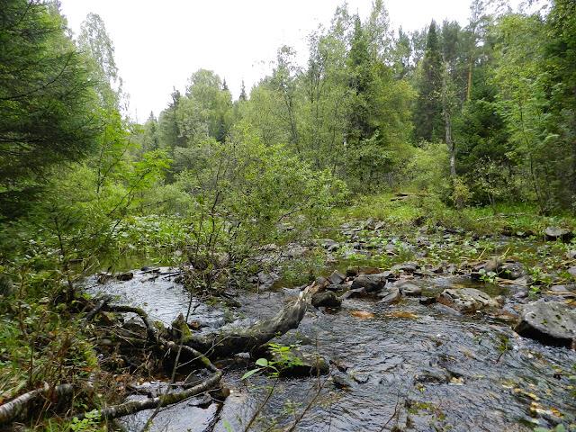 Река Тесьма в национальном парке Таганай