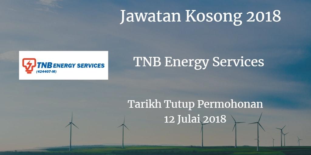 Jawatan Kosong TNBES 12 Julai 2018