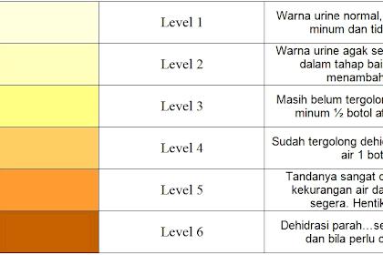 Kenali Warna Air Kencing (Urine) Anda Sebelum Hal Buruk Menimpa Anda