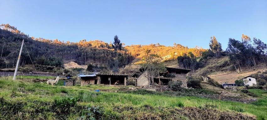 Un paseo a la laguna de Quengococha - Fotos 2021