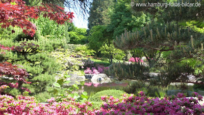 Japanischer Garten, Blumen, Steine
