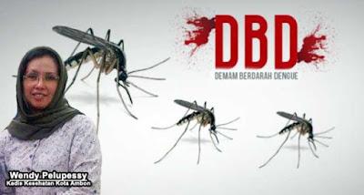 Ambon, Malukupost.com - Kasus demam berdarah dengue (DBD) di Kota Ambon, Provinsi Maluku selama Januari hingga awal Februari 2019 tercatat 25 kasus, meningkat dibandingkan periode yang sama tahun 2018 hanya dua kasus.    Kepala Dinas Kesehatan Kota Ambon Wendy Pelupessy di Ambon, Kamis (7/2), mengatakan dari 27 kasus BDB itu terbanyak di desa Lateri yakni enam kasus, dan menyebar di kawasan lain satu kasus, seperti di Kayu Putih Negeri Soya dan Halong.