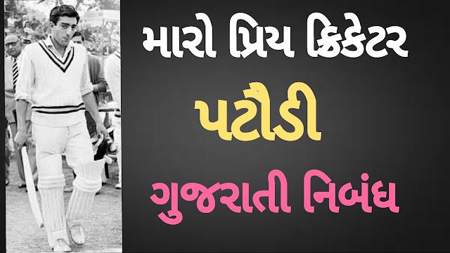 મારો પ્રિય ક્રિકેટર- પટૌડી / maro priy cricketer- pataudi