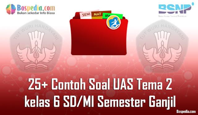 25+ Contoh Soal UAS Tema 2 untuk kelas 6 SD/MI Semester Ganjil Terbaru
