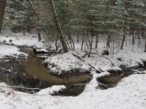 snow-edged creek