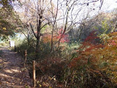白旗池・紅葉ハイキング