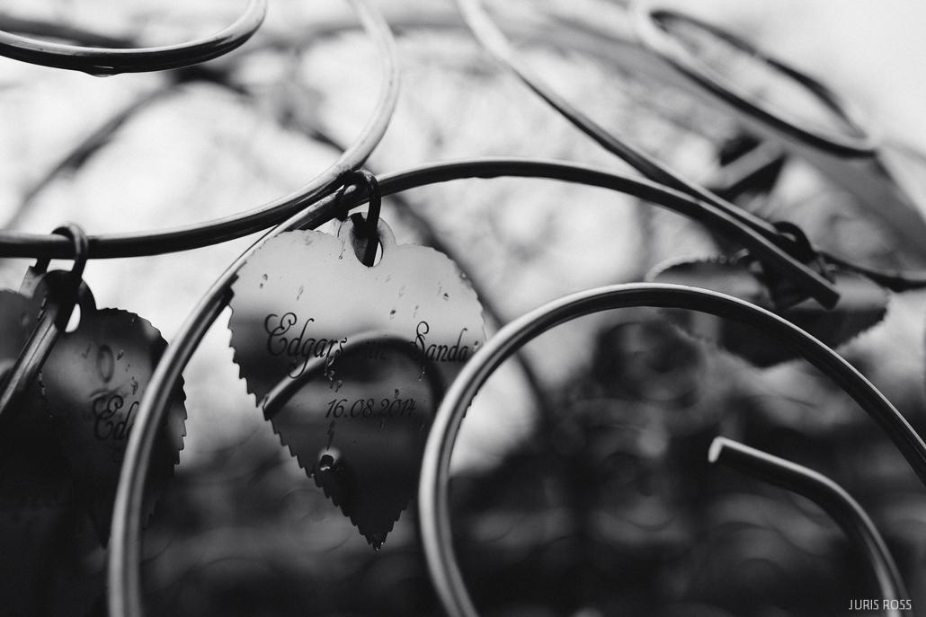 mīlestības koks rēzeknē