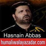 https://www.humaliwalyazadar.com/2018/09/hasnain-abbas-nohay-2019.html