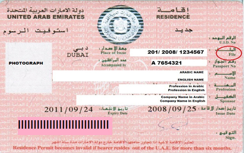 UAE Visa: UAE Residence Visa For Investors Family