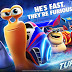 Turbo (2013) Full Movie Hindi Download [HD]