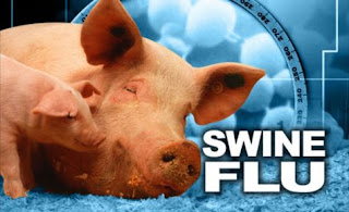 Swine Flu Hits Ghana killed 11 and 44 students 44