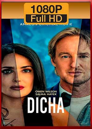 Dicha - Felicidad (2021) [1080p] [Latino - Inglés] [MEGA]