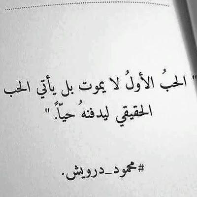 اقول حب قصيره