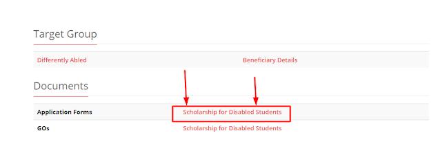 Disability Scholarship application